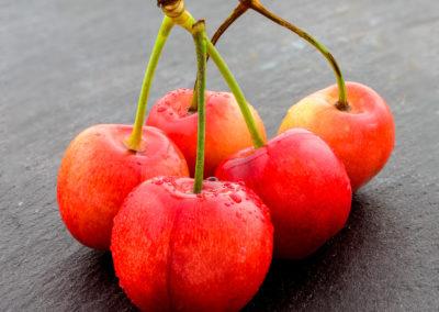 Cherries - fresh from the garden